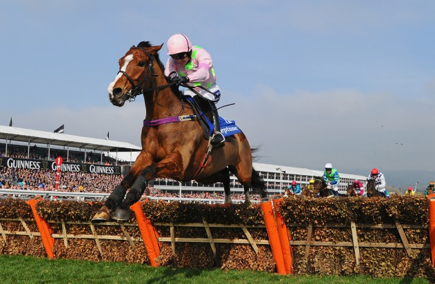 Ruby Walsh celebrates after winning the Champion Hurdle on Faugheen in 2015